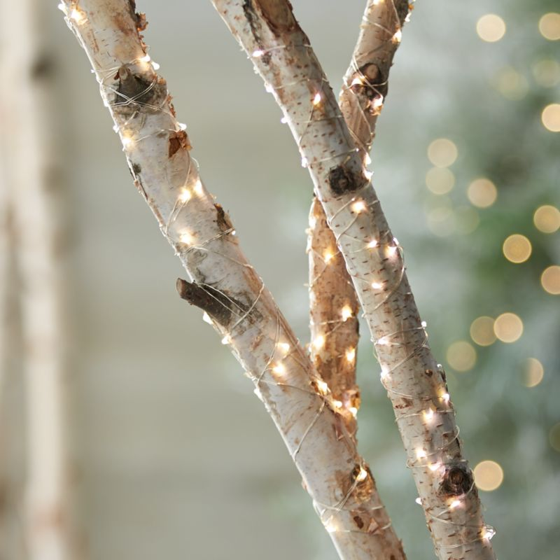 How To String Lights On A Tall Tree : Twinkle Silver String Lights Crate and Barrel