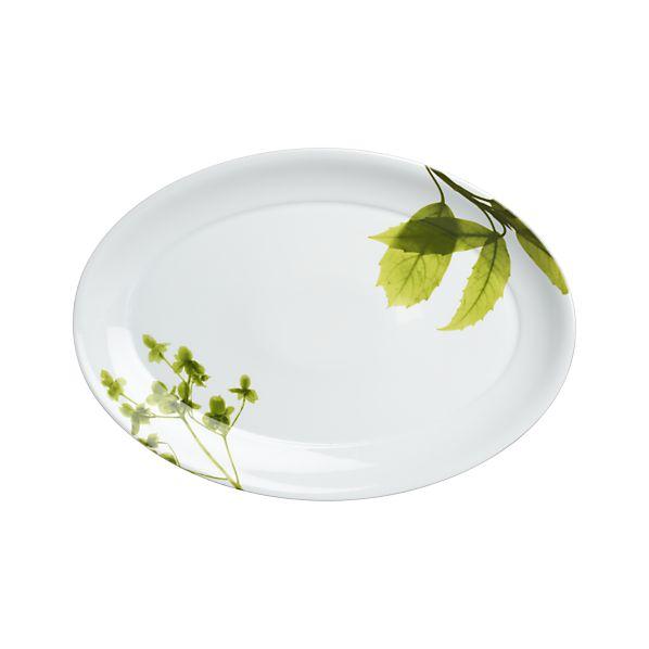 Verena Platter
