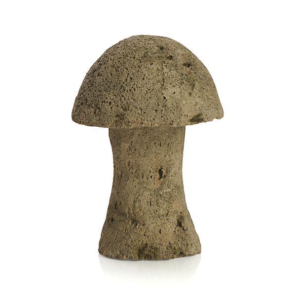 Volcanic Large Mushroom