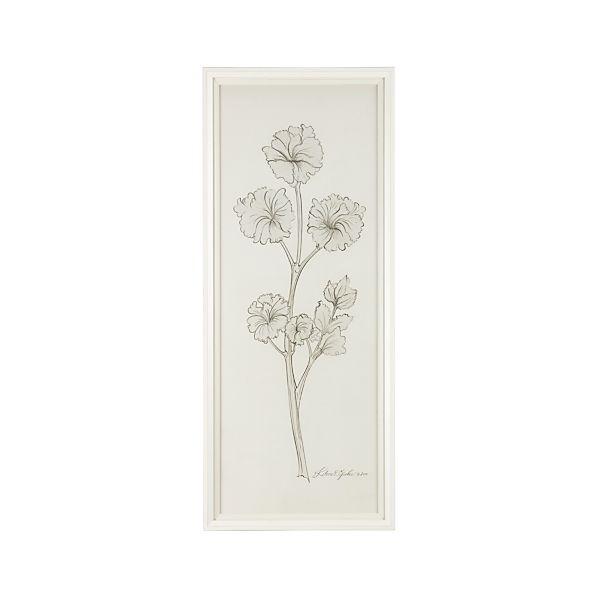 White Herbology Parsley Print