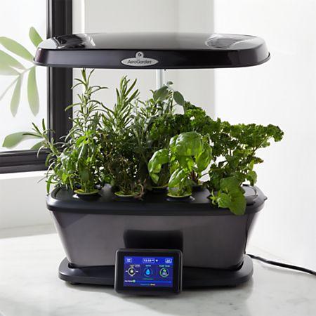 AeroGarden Harvest Bounty Elite Platinum Indoor Garden + Reviews | Crate  and Barrel