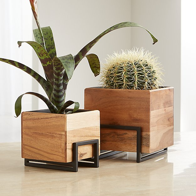 Arcaydia Tabletop Planters - Image 1 of 3