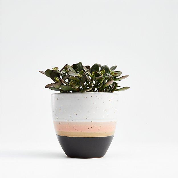 Aveiro Small Blush Planter - Image 1 of 8