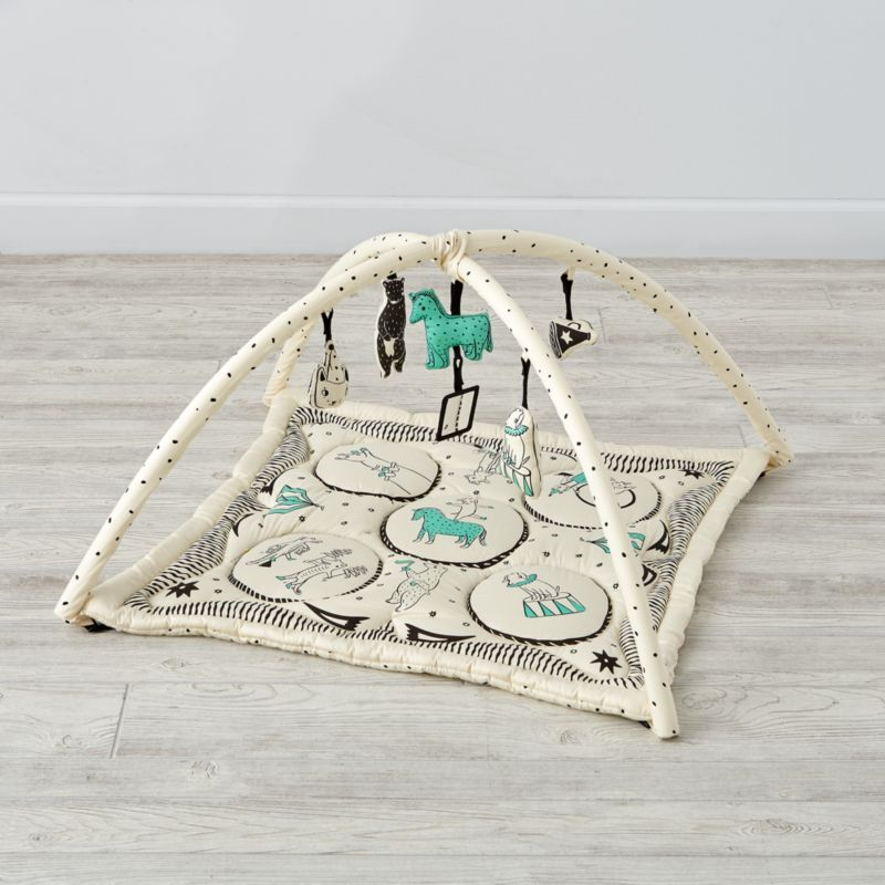 Ringmaster Baby Activity Gym Reviews Crate And Barrel