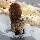 BuriSquirrelSHF17