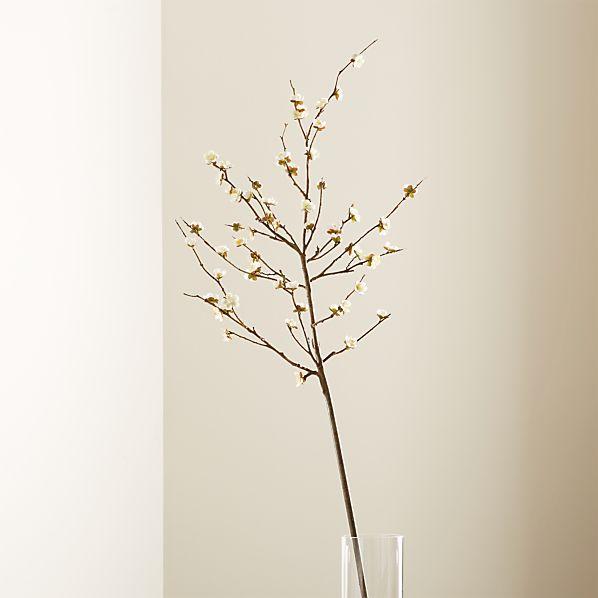 CherryBlossomWhiteROSHS17