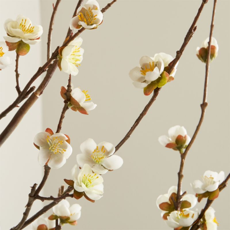 White Cherry Blossom Flower Branch Reviews Crate And