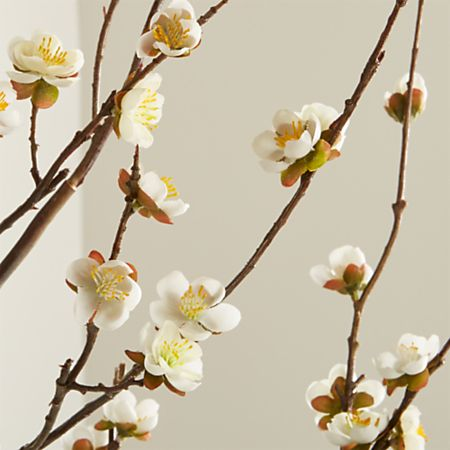 White Cherry Blossom Flower Branch Reviews Crate And Barrel