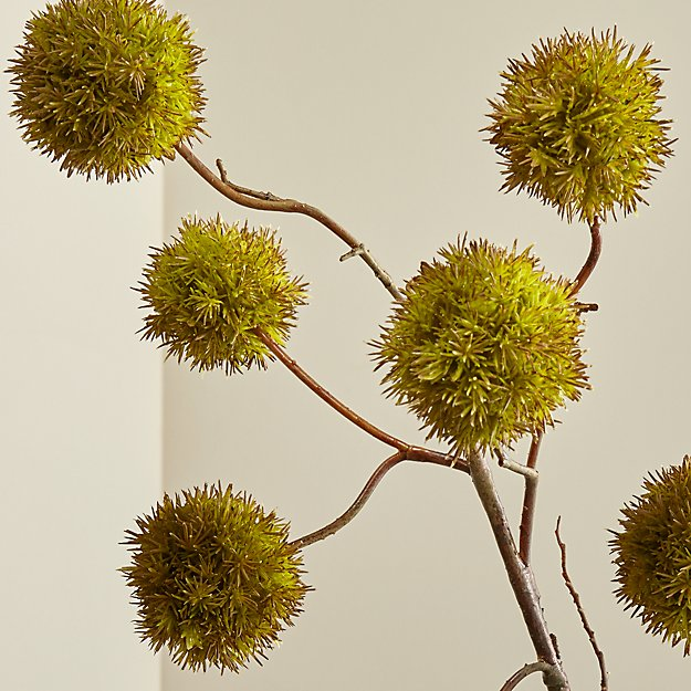 Cb2 Free Shipping >> Faux Chestnut Branch | Crate and Barrel