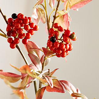 Chili Leaf Berry Stem