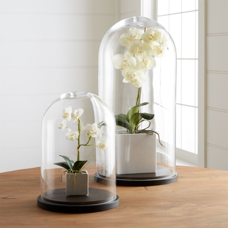Home Decor Accents gorgeous gold accents how to incorporate the trend into your home decor from the house Glass Cloches