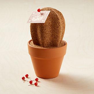 Cork Cactus Organizer