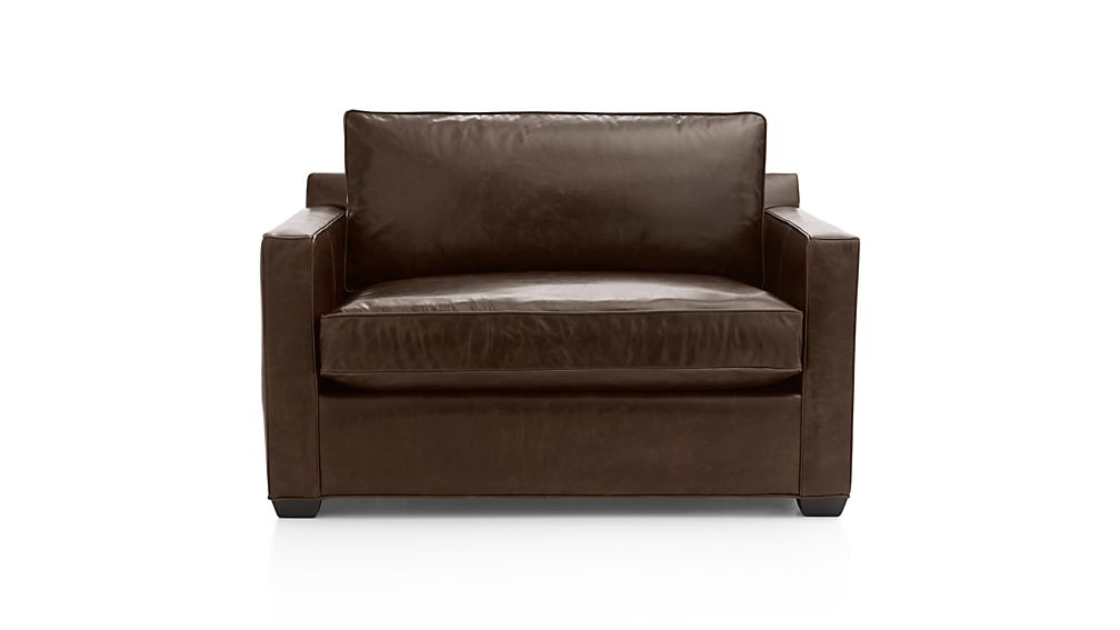 Davis Leather Twin Sleeper Sofa with Air Mattress