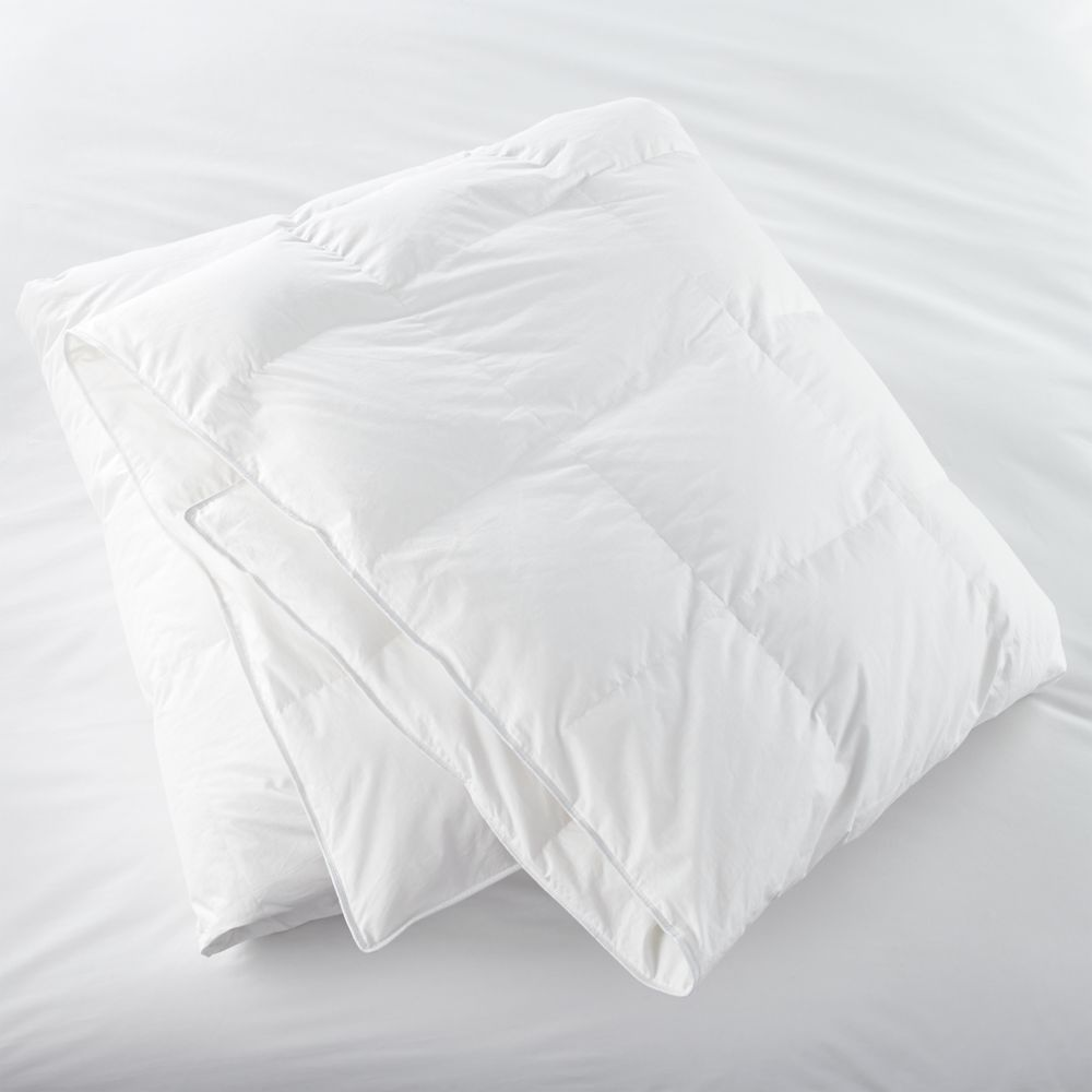 Twin Classic Down Duvet Insert - Crate and Barrel