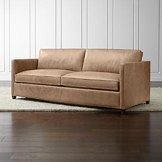 Dryden Leather Queen Sleeper Sofa with Air Mattress