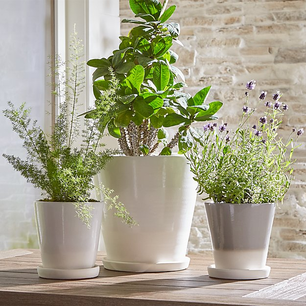 Dyp White Two Tone Planters Crate And Barrel