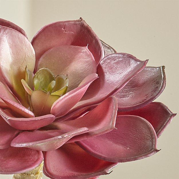 Artificial Echeveria Burgundy Succulent Stem - Image 1 of 10