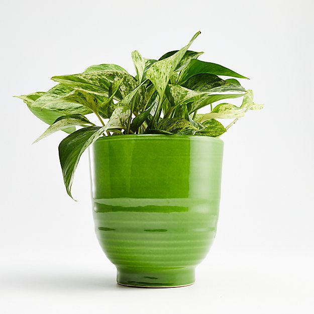 Elba Green Planter - Image 1 of 2