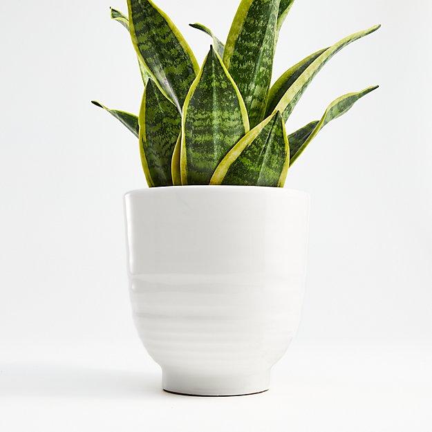 Elba White Planter - Image 1 of 2