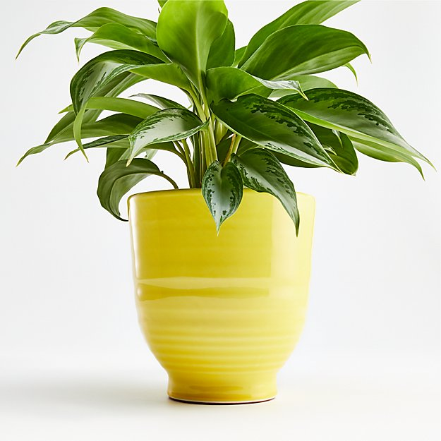 Elba Yellow Planter - Image 1 of 2