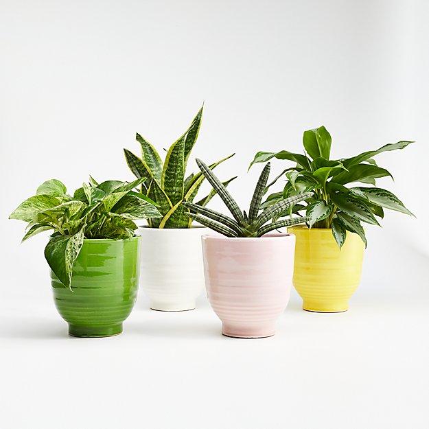 Elba Planters - Image 1 of 2
