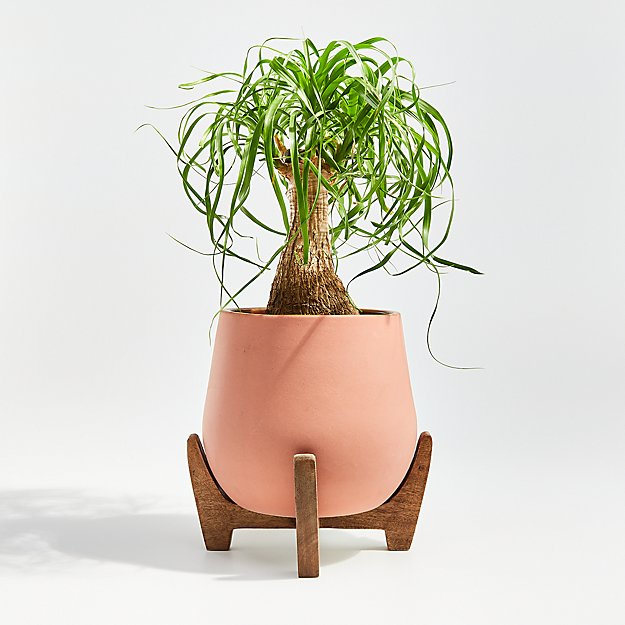 Evie Medium Planter with Stand - Image 1 of 3
