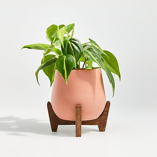 Evie Small Planter with Stand - Image 1 of 3