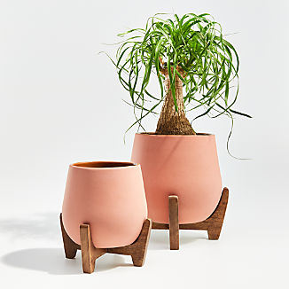 Evie Planters with Stands