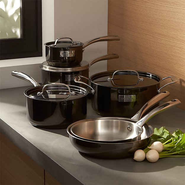 Fleischer and Wolf London Titanium Stainless Steel 10-Piece Cookware Set