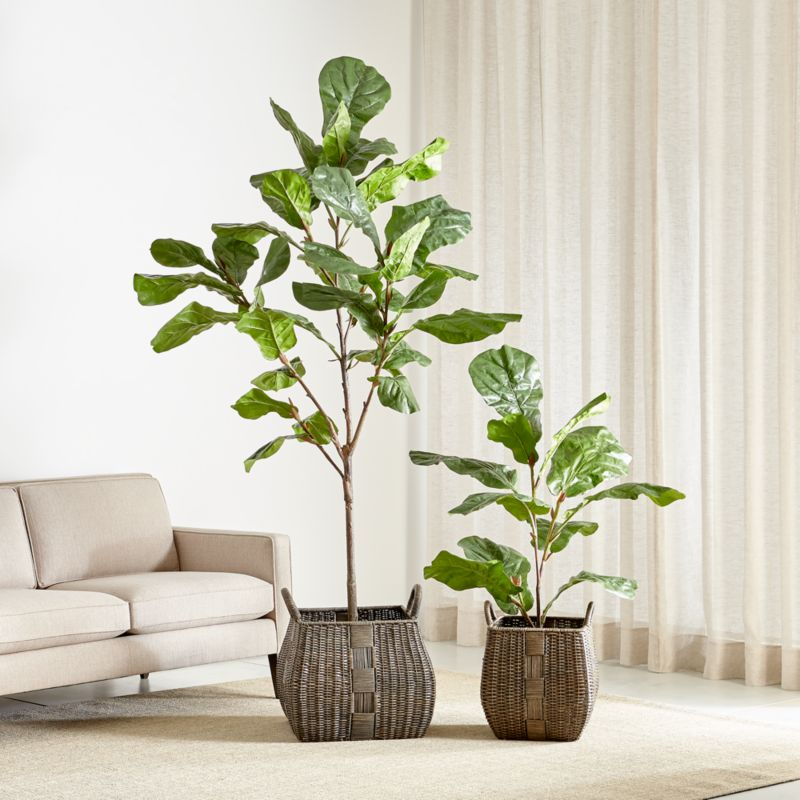 Faux Fiddle Leaf Fig Trees | Crate and Barrel