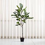 Faux 7' Fiddle Leaf Fig Tree