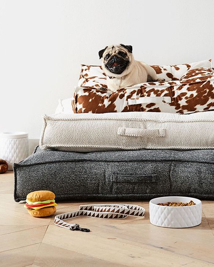 8 Dog Room Ideas Crate And Barrel