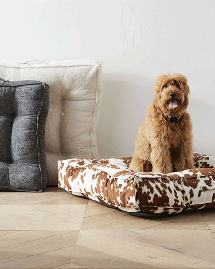 Kid Pet Friendly Furniture Crate, Pet Friendly Furniture