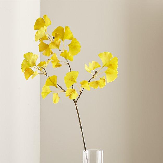 Gingko Stem Yellow