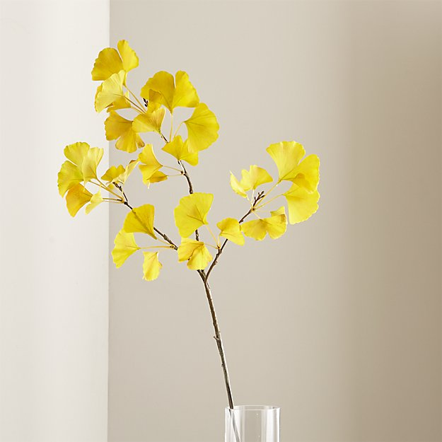 Gingko Stem Yellow + Reviews | Crate and Barrel