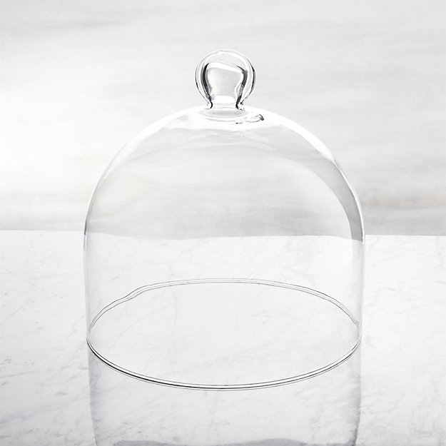 Glass Dome Crate And Barrel