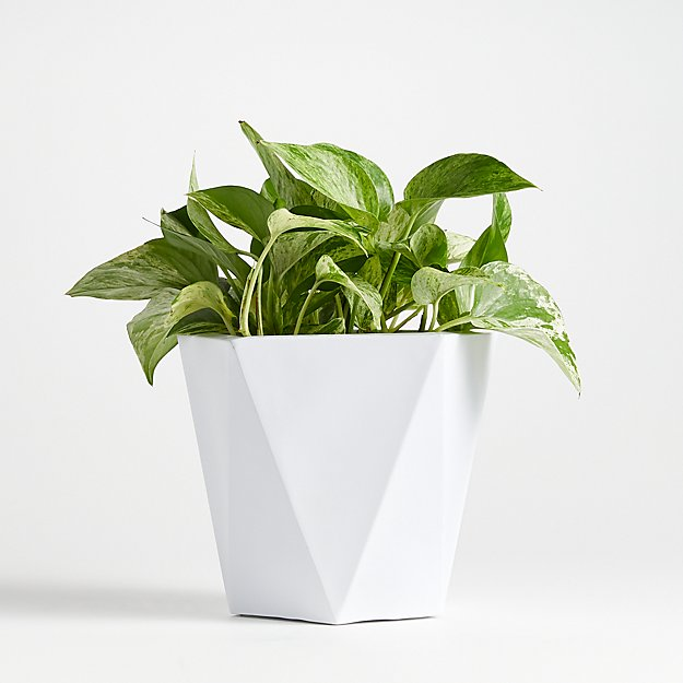 Haeden Medium White Planter - Image 1 of 2