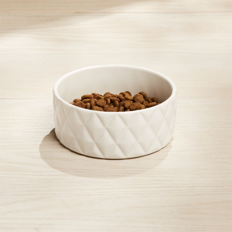 Harlequin Small Dog Bowl Reviews Crate And Barrel