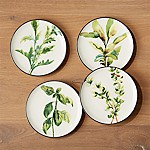 Herb Plates, Set of 4