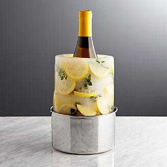 Ice Mold/Wine Bottle Chiller