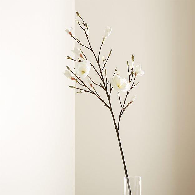 Magnolia Flower Branch - Image 1 of 7