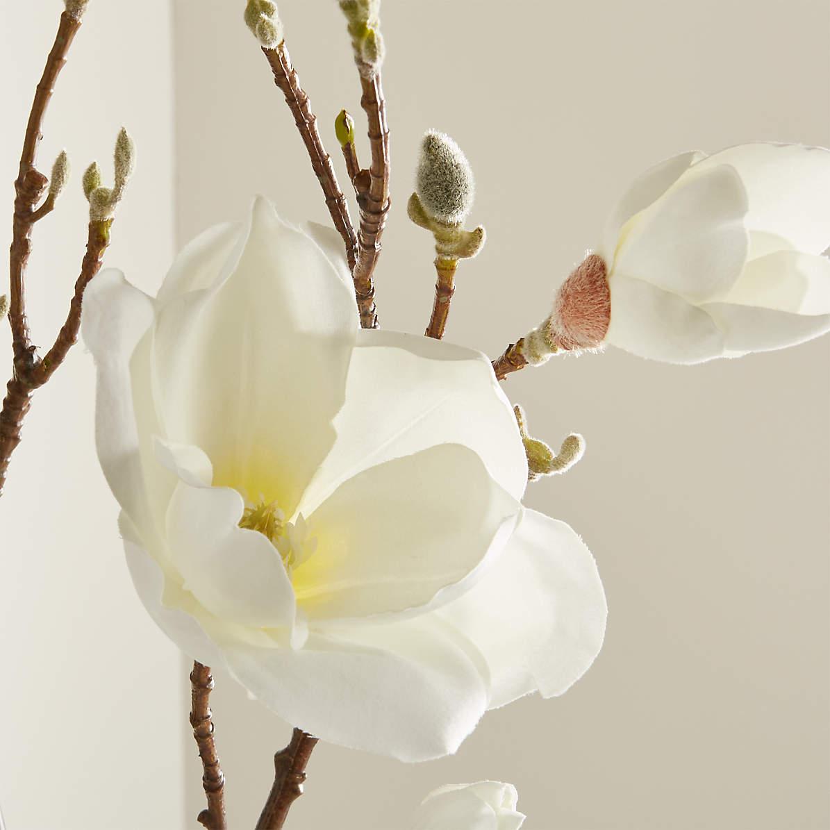 Magnolia Artificial Flower Stem Reviews Crate And Barrel Canada