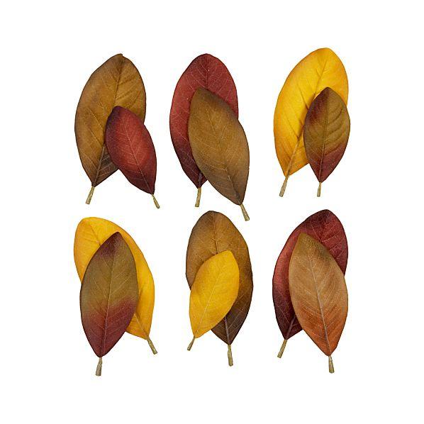Set of 12 Magnolia Scatter Leaves