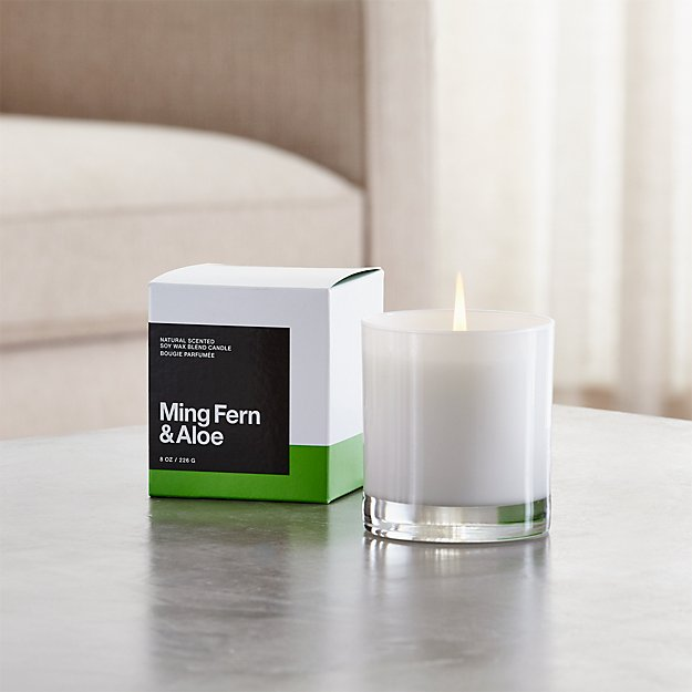 Ming Fern and Aloe Scented Candle
