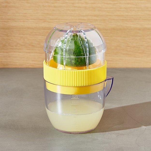 Mini Citrus Juicer Crate And Barrel