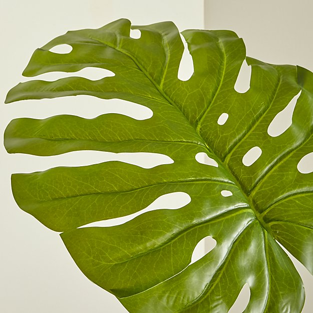 Faux Monstera Leaf - Image 1 of 5
