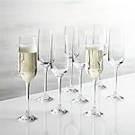 Nattie Champagne Glasses, Set of 8