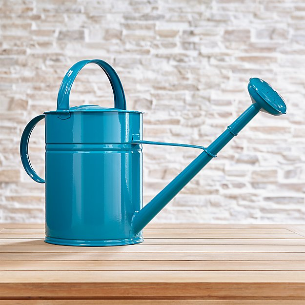 Watering Teal Can Large