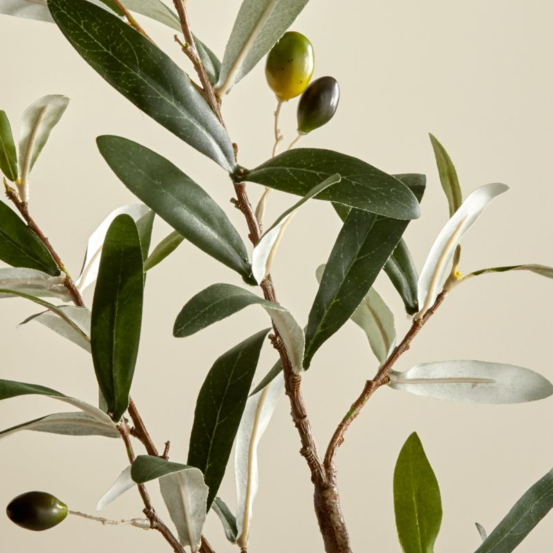 Faux Olive Stem by Crate&Barrel