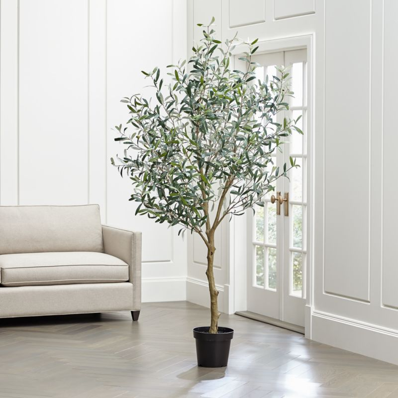 Ford Order Tracking >> Faux Olive Tree + Reviews | Crate and Barrel